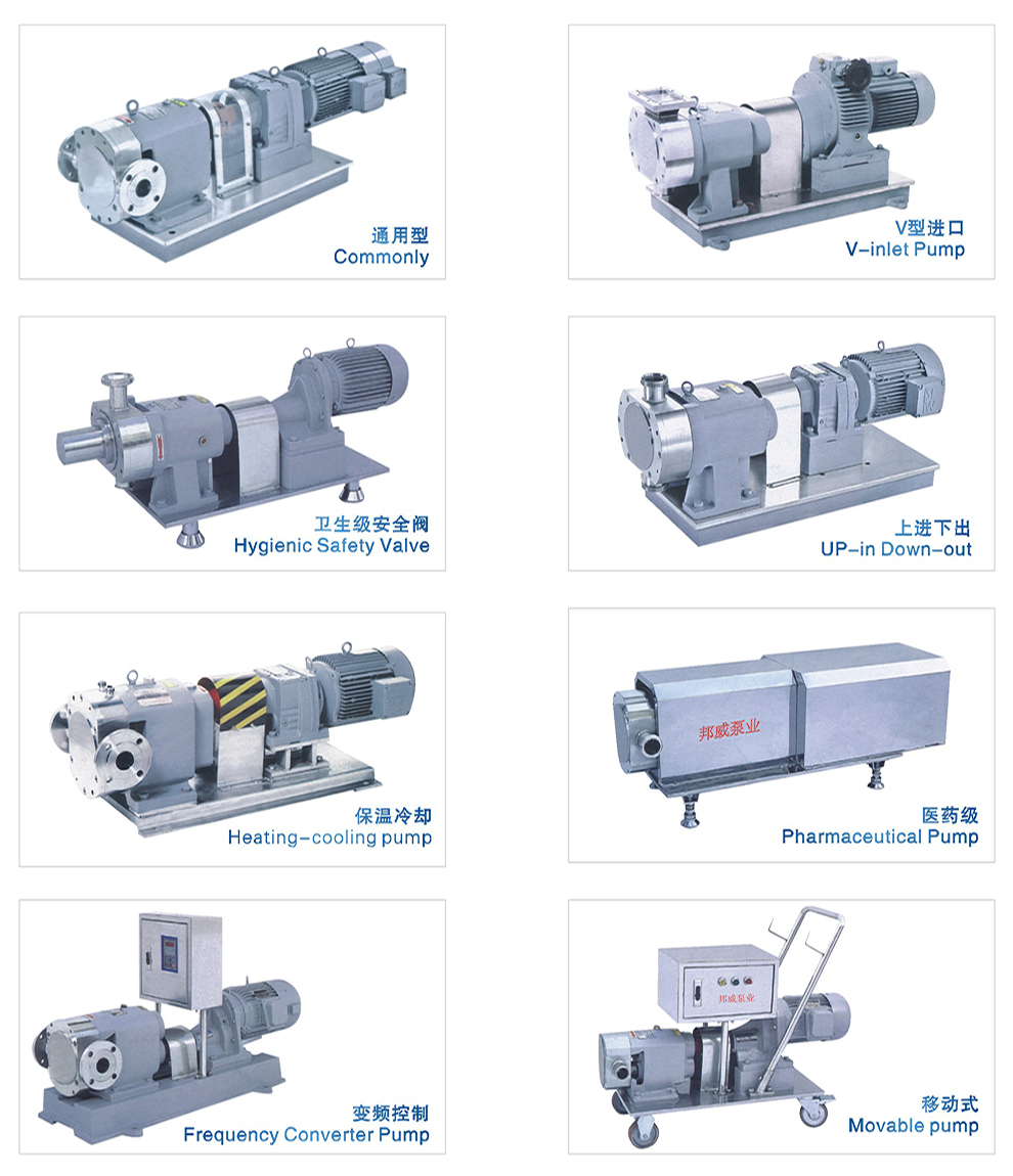 Positive displacement rotary lobe pump