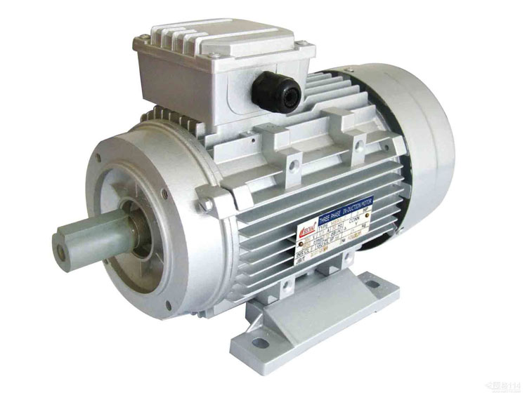 Stainless steel rotary lobe pumps